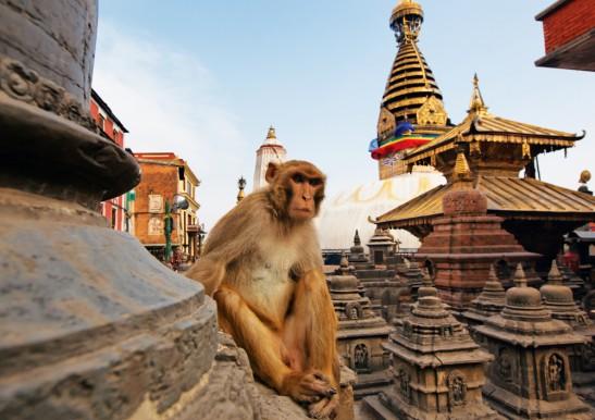 Знакомство с Непалом